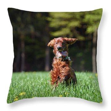 Elf Throw Pillow