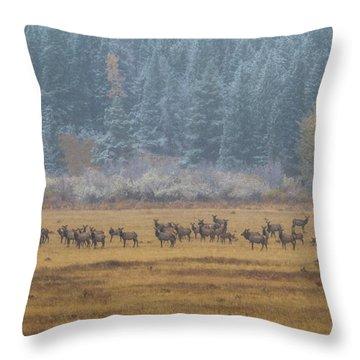 Elk On A Snowy Autumn Day Throw Pillow