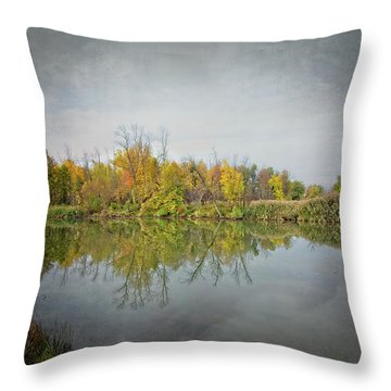 Throw Pillow featuring the photograph Ellicott Creek Reflections by Guy Whiteley