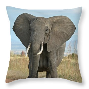 Adam Jones Throw Pillows