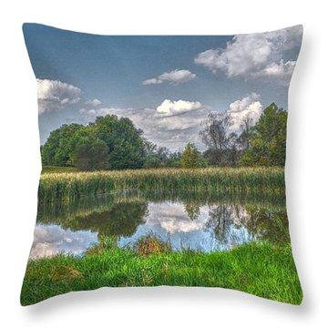 Ellis Pond Throw Pillow