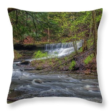 Emery Park Throw Pillow