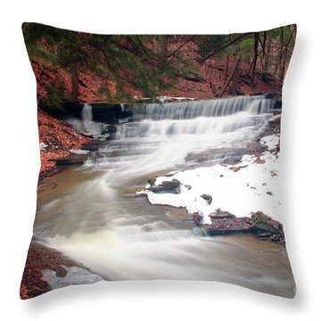 Emery Park South Wales Ny Throw Pillow