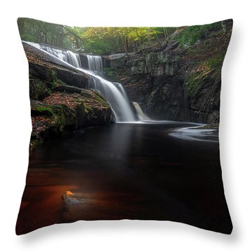 Throw Pillow featuring the photograph Enders Elegance by Bill Wakeley