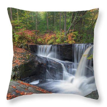 Throw Pillow featuring the photograph Enders Falls Autumn 2 by Bill Wakeley