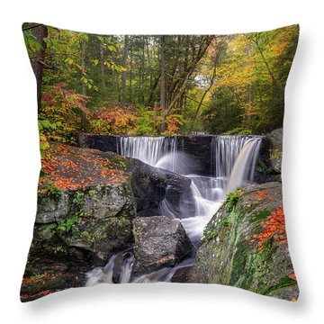 Throw Pillow featuring the photograph Enders Falls Autumn 2018 by Bill Wakeley