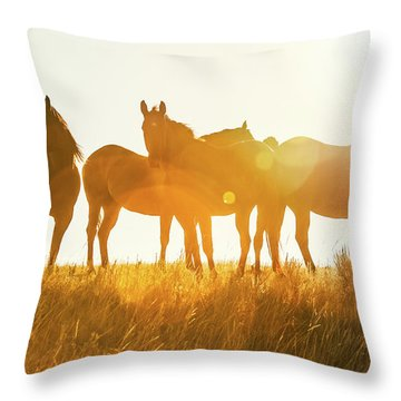 Equine Glow Throw Pillow