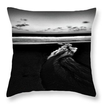 Estuary To The Sea Throw Pillow