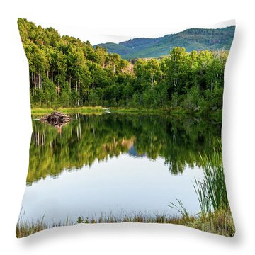 Throw Pillow featuring the photograph Evening At Ivie Pond by TL Mair