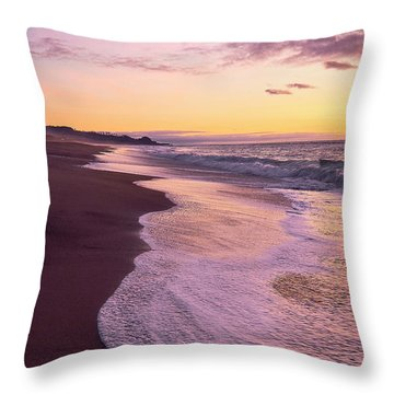 Throw Pillow featuring the photograph Evening On Gleneden Beach by Whitney Goodey