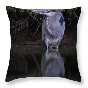 Evening Stalk Throw Pillow