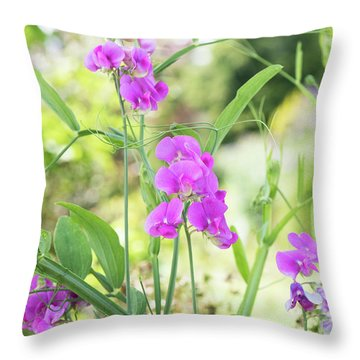 Throw Pillow featuring the photograph Everlasting Pea Flowers by Tim Gainey