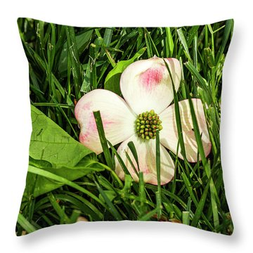 Every Dogwood Has Its Day Throw Pillow
