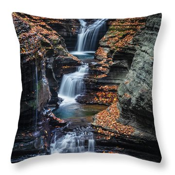 Upstate Ny Throw Pillows
