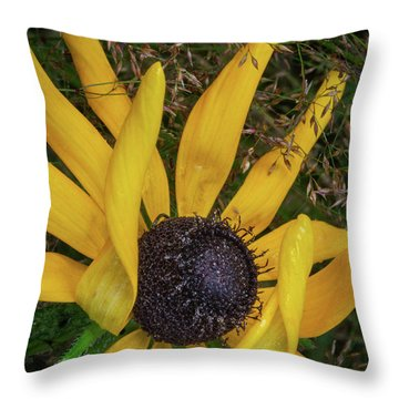 Throw Pillow featuring the photograph Extraordinary by Dale Kincaid