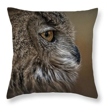 Eye Of Wisdom  Throw Pillow