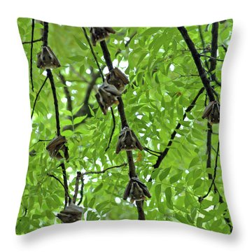Throw Pillow featuring the photograph Eyes Watching by Mark Duehmig