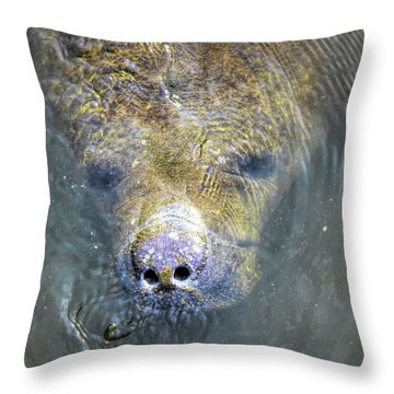 Face Of The Manatee Throw Pillow