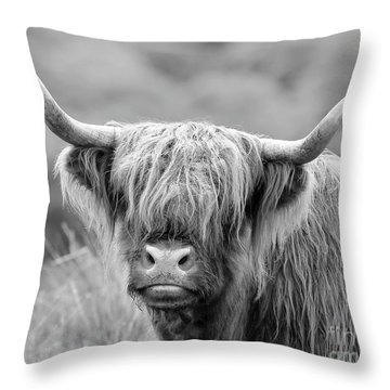 Face-to-face With A Highland Cow - Monochrome Throw Pillow