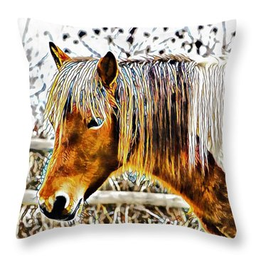 Facets Of Friendship Throw Pillow