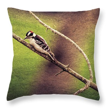 Faded Canvas Woodpecker Throw Pillow
