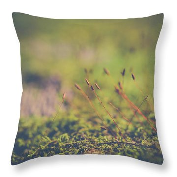 Throw Pillow featuring the photograph Fairy Hunt by Michelle Wermuth