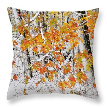 Fall And Snow Throw Pillow