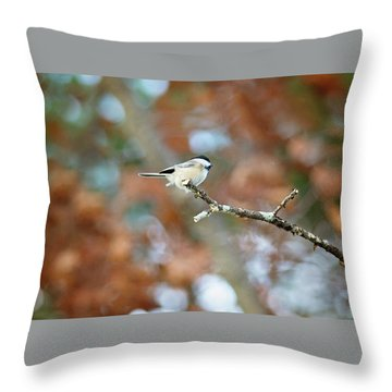 Throw Pillow featuring the photograph Fall Chickadee by Sue Collura