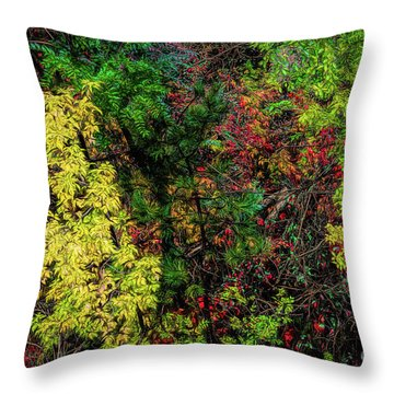 Throw Pillow featuring the photograph Fall Color Along The Big Tom by Jon Burch Photography