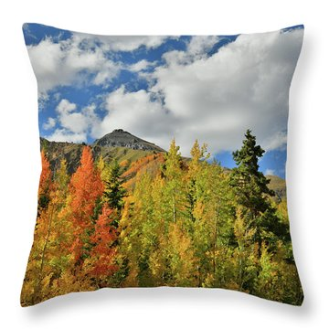 Fall Colored Aspens Bask In Sun At Red Mountain Pass Throw Pillow