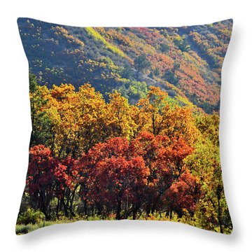 Fall Colors Along Avalanche Creek Road Throw Pillow