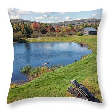 Throw Pillow featuring the photograph Fall Colors In Port Au Persil by Tatiana Travelways