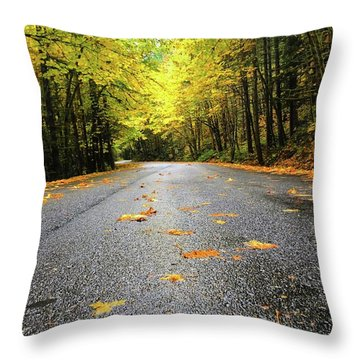 Throw Pillow featuring the photograph Fall Drive by Brian Eberly