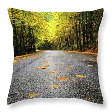 Fall Drive Throw Pillow