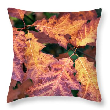 Throw Pillow featuring the photograph Fall Flames by Whitney Goodey