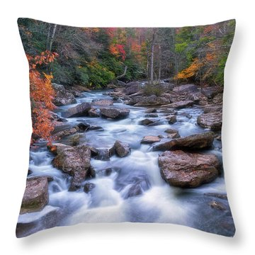 Throw Pillow featuring the photograph Fall Flow by Russell Pugh