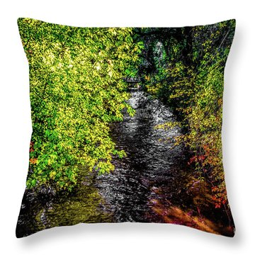 Throw Pillow featuring the photograph Fall Foliage by Jon Burch Photography