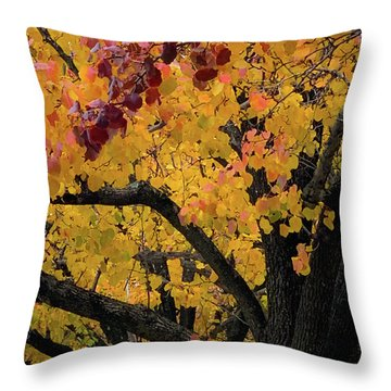 Fall In Carlyle Throw Pillow