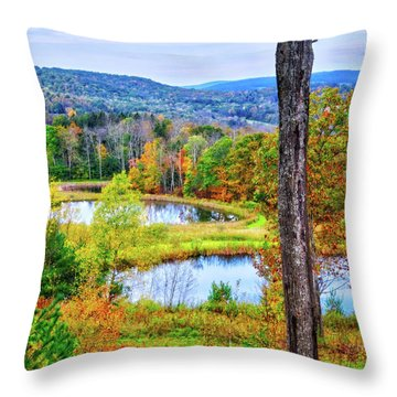 Throw Pillow featuring the photograph Fall Memories At The Ponds by Lynn Bauer