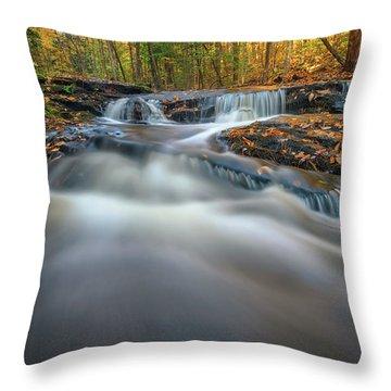 Throw Pillow featuring the photograph Fall Morning At Vaughan Brook. by Rick Berk