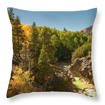 Fall On Independence Pass Throw Pillow