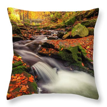 Fall Power Throw Pillow