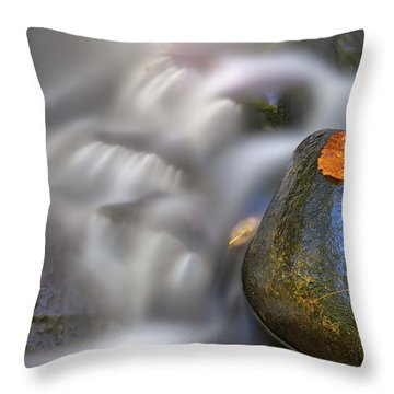 Throw Pillow featuring the photograph Fallen Leaf And Mountain Stream by Rick Berk