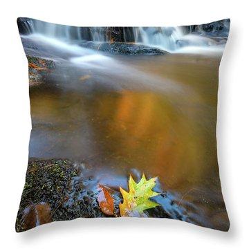 Throw Pillow featuring the photograph Fallen Oak Leaf In Vaughan Woods by Rick Berk
