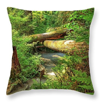 Fallen Trees In The Hoh Rain Forest Throw Pillow