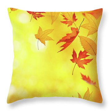 Winds Of Change Throw Pillows