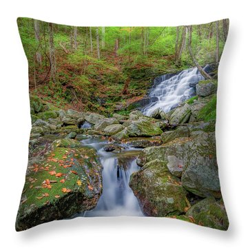 Throw Pillow featuring the photograph Falls Brook 2 by Bill Wakeley