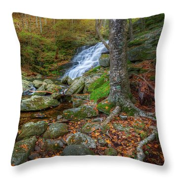Throw Pillow featuring the photograph Falls Brook Autumn by Bill Wakeley