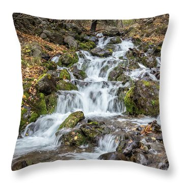 Falls Creek Throw Pillow