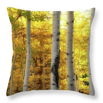 Fall's Visitation Throw Pillow